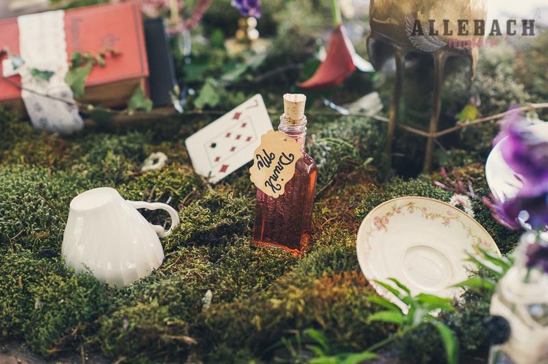 Steampunk Alice in Wonderland for Smitten and Bitten by AllebachPhotography