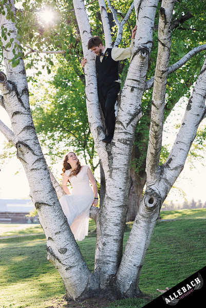 bride groom in tree Yellow House of Willowdale Kennett Square wedding