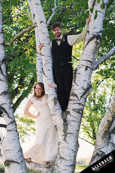 Yellow House of Willowdale Kennett Square wedding bride groom tree